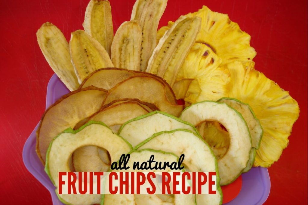Dried Fruit Chips Recipe