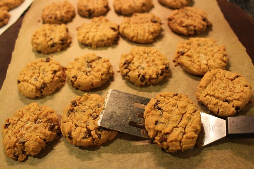 Easy All Natural Gluten Free Peanut Butter Cookie Recipe