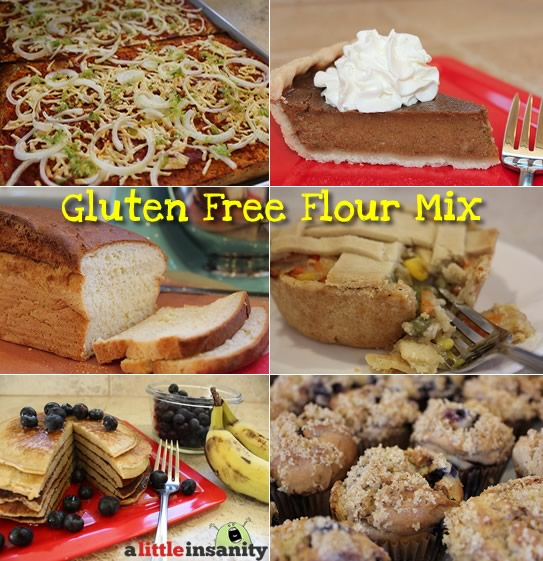 Erika's All Purpose Gluten Free Flour Mix