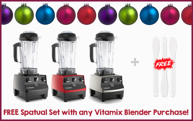 free gift with vitamix coupon code
