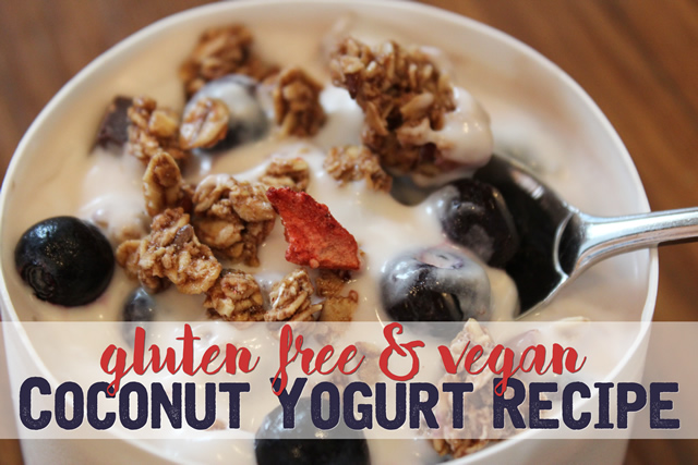 Gluten Free Vegan Coconut Yogurt Recipe