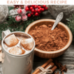 Homemade Instant Hot Cocoa Mix Recipe - Pinterest